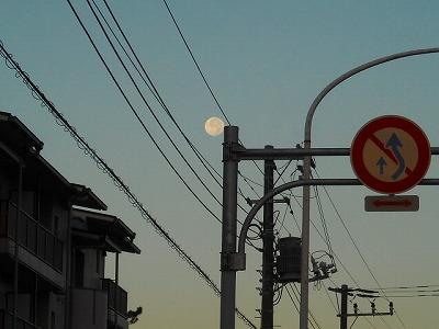 s-画像 881.jpg